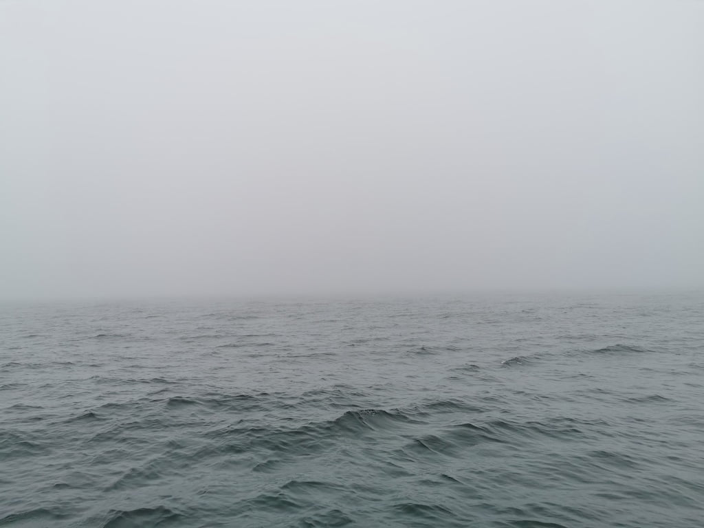 Gdzie wiatr poniesie. żeglarstwo